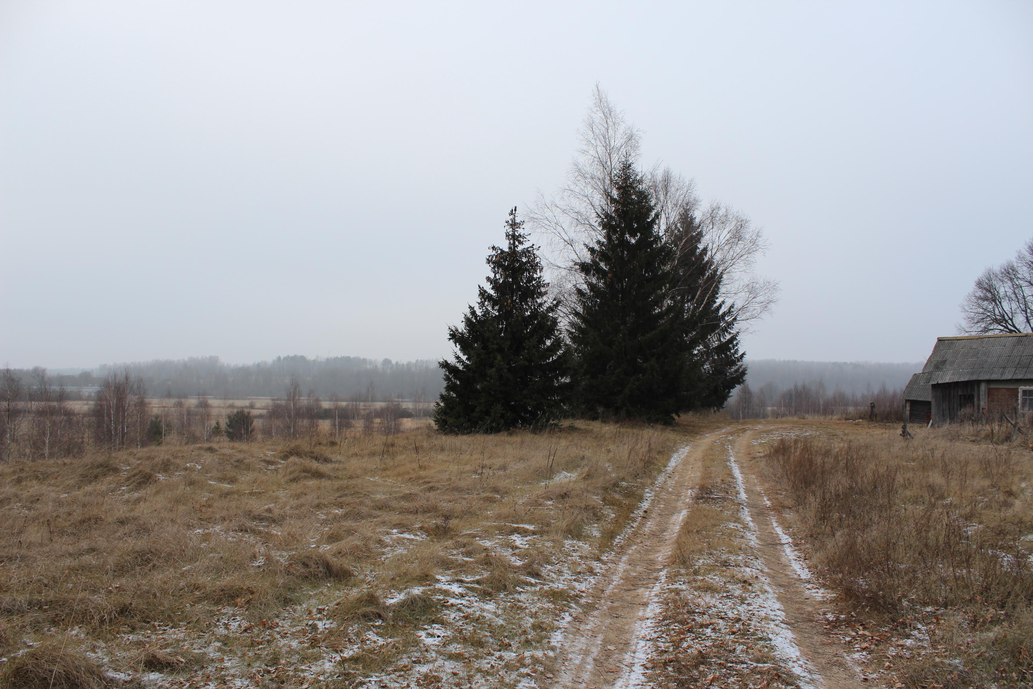 Памятное место, где 23 сентября 1941 г. гитлеровцы казнили 17 мирных жителей, деревня сожжена. Установлен обелиск