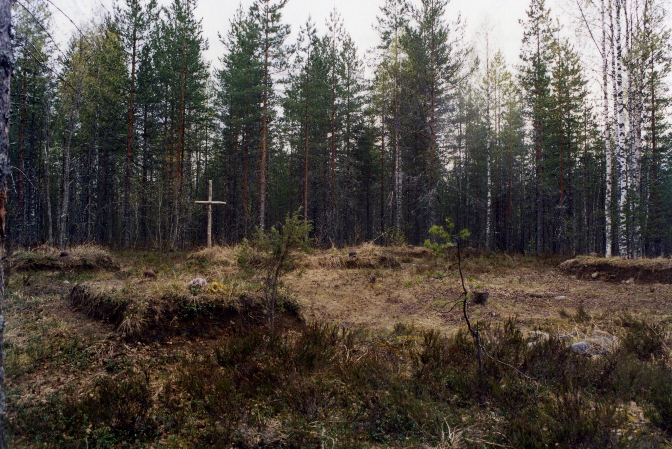 Братские могилы (девять) советских воинов