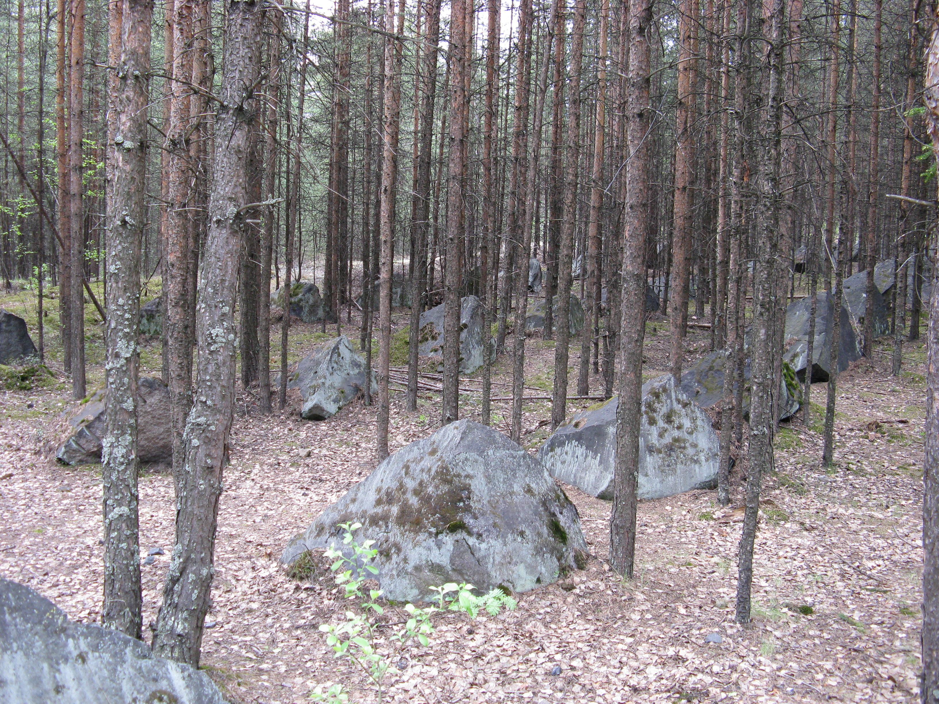 Место прорыва Медвежьегорского узла обороны