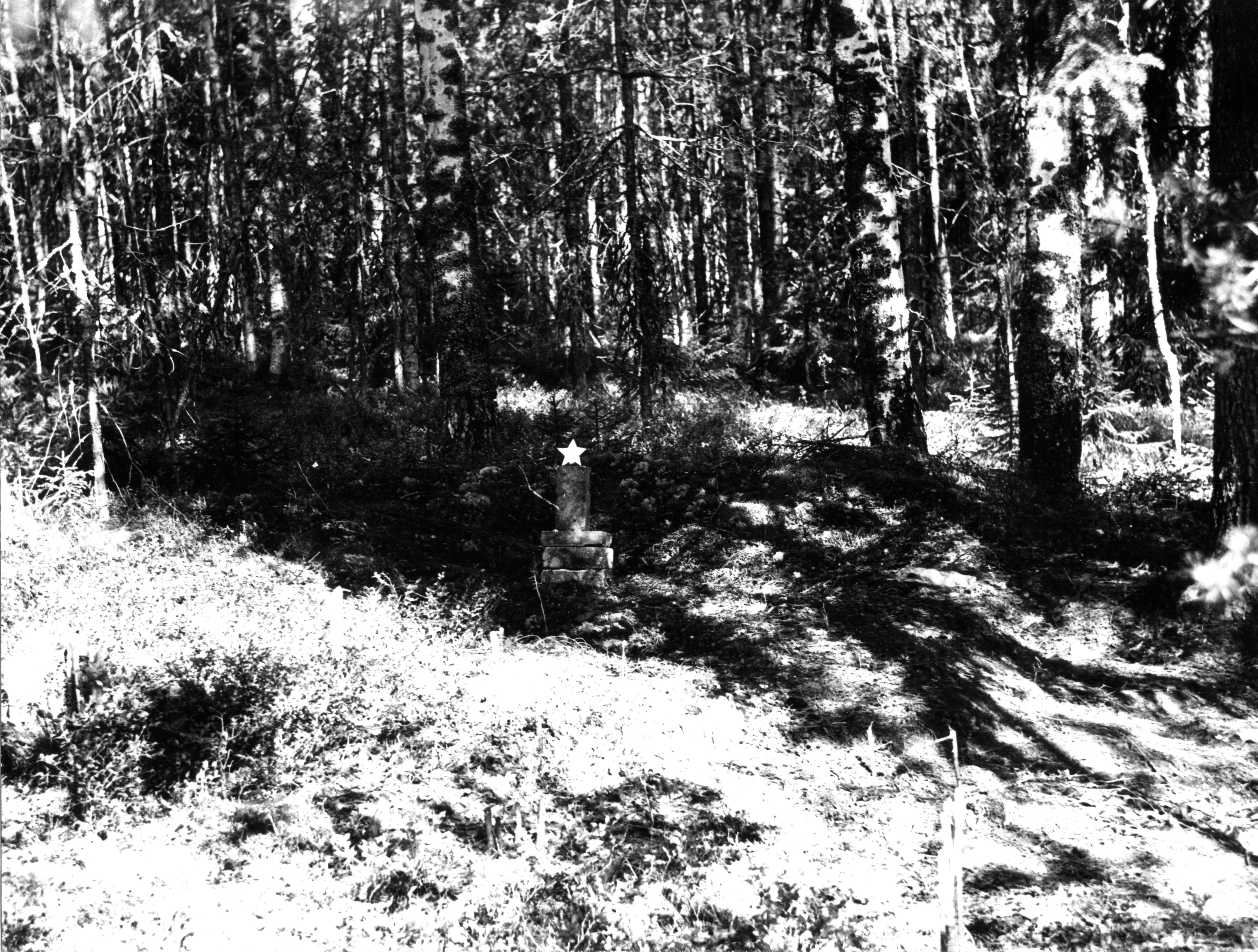Братские могилы (две) советских воинов